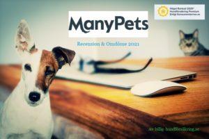 Manypets-hundförsakring- omdöme 2021